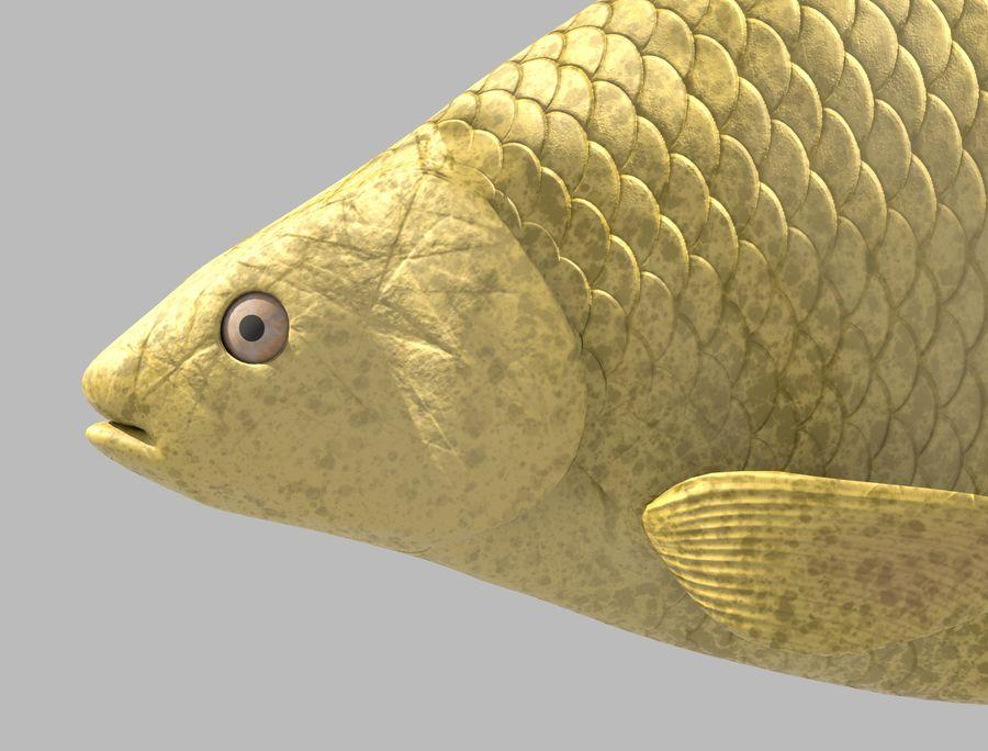 金の魚のアニメーション royalty-free 3d model - Preview no. 5