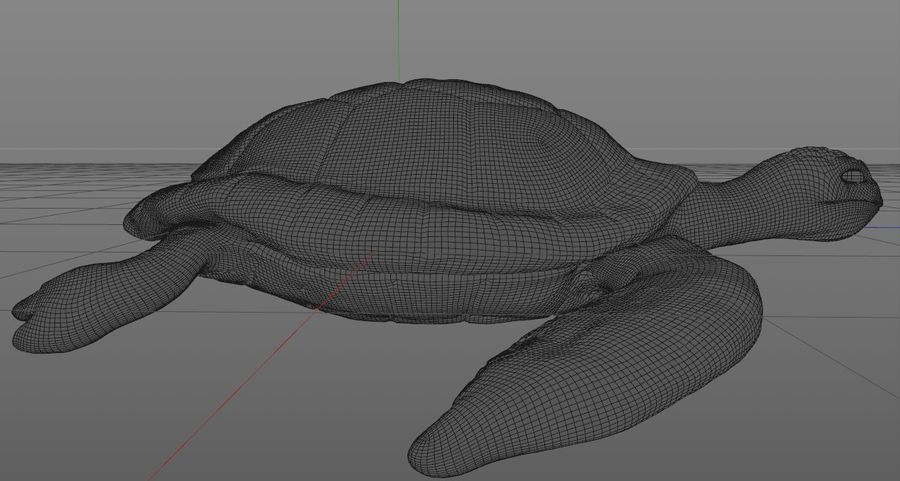 Turtle royalty-free 3d model - Preview no. 8