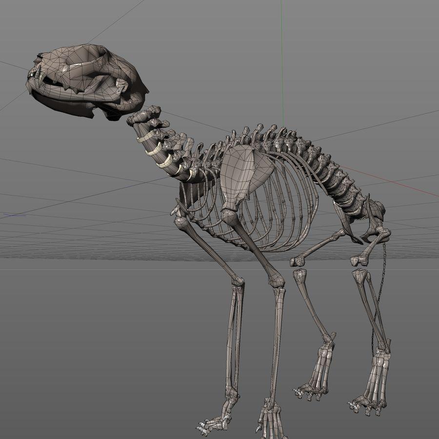 Animal Bone royalty-free 3d model - Preview no. 7
