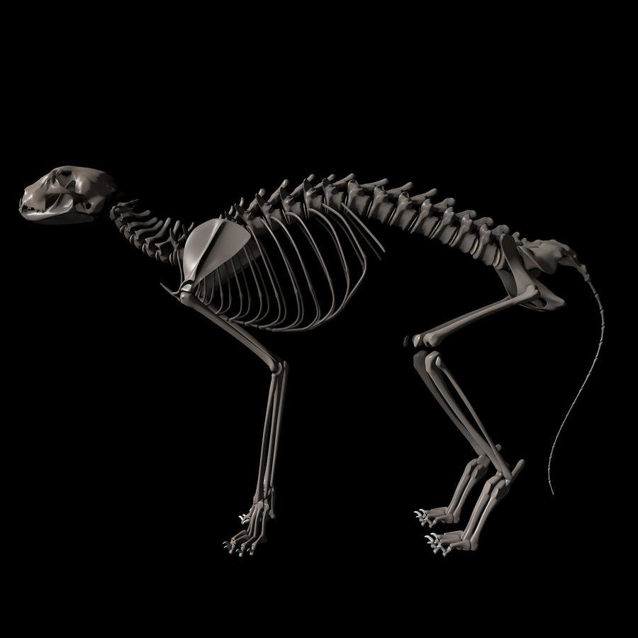 Animal Bone royalty-free 3d model - Preview no. 2