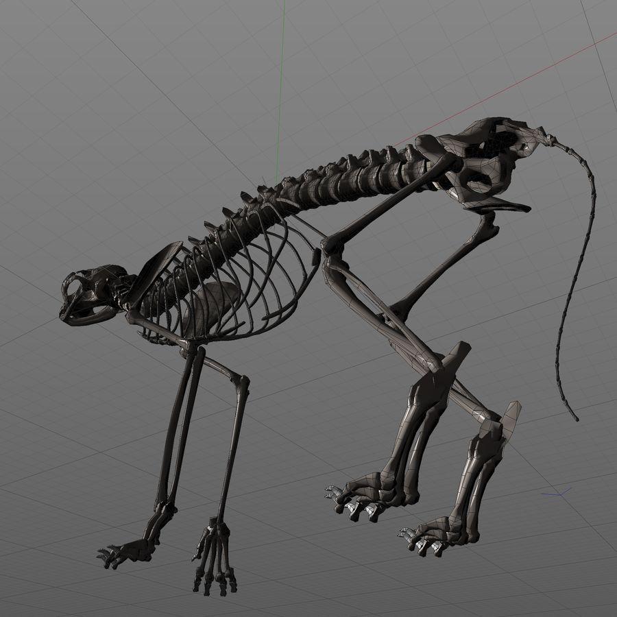 Animal Bone royalty-free 3d model - Preview no. 8
