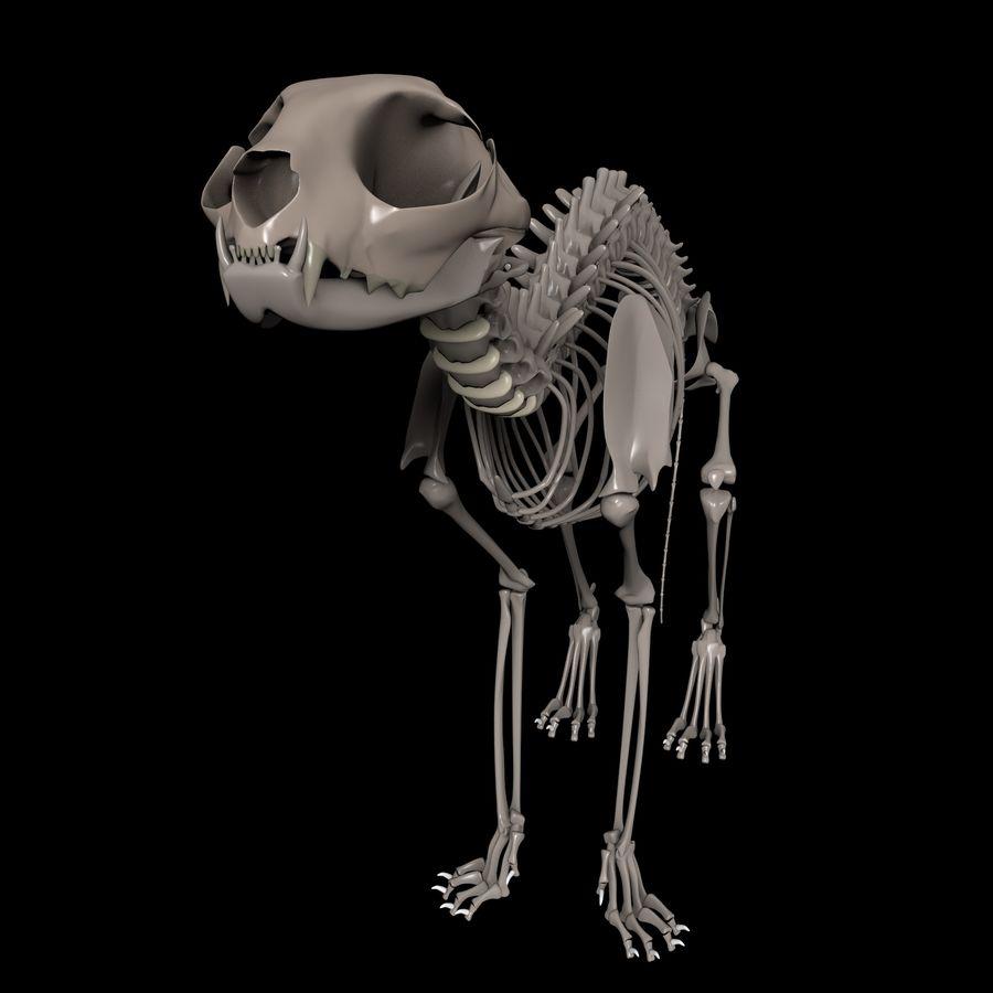 Animal Bone royalty-free 3d model - Preview no. 3