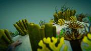 Gerçekçi mercan sualtı sahne 3d model