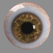 逼真的人眼 3d model