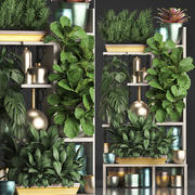 Kolekcja Rośliny egzotyczne 372 3d model