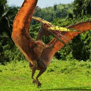 翼龙食肉爬行动物为电影院4D索具 3d model