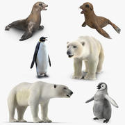 Collection d'animaux de l'Arctique 3d model