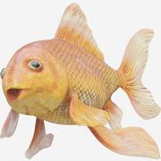 金魚(リギッド) 3d model