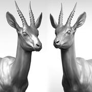 Gazelle antilope Gazella 3d model