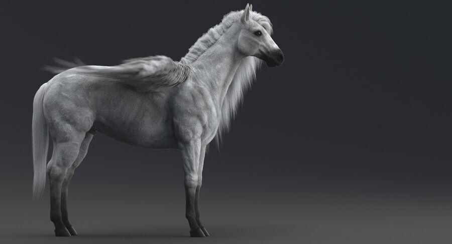 Pegasus royalty-free 3d model - Preview no. 10