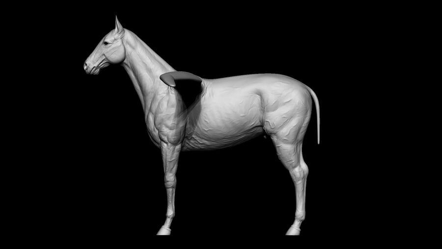 Pegasus royalty-free 3d model - Preview no. 15