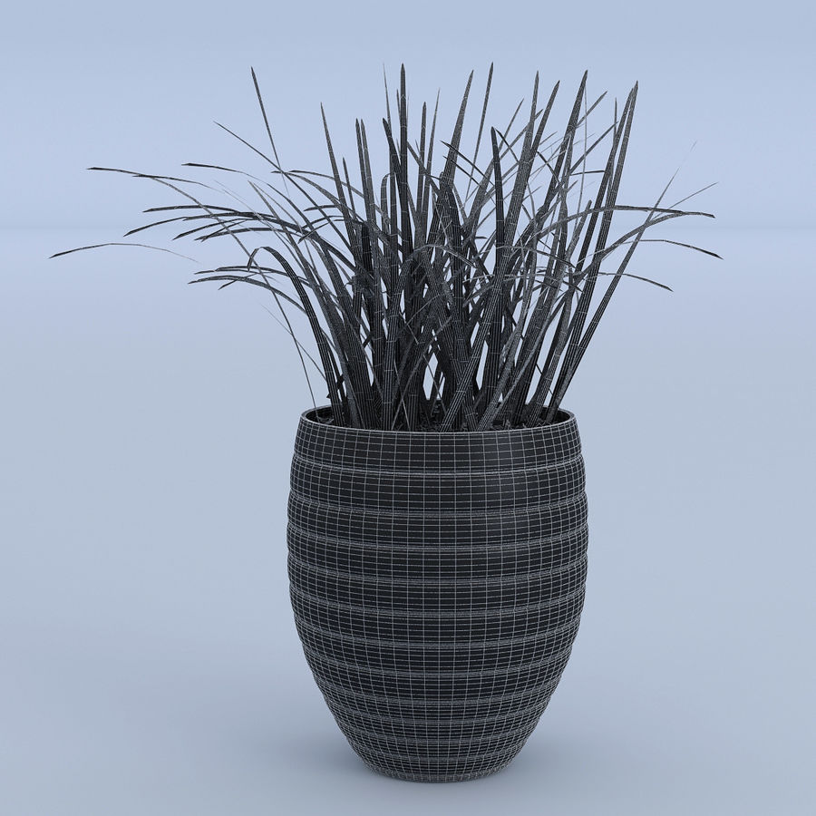 Flower Grass Pot royalty-free 3d model - Preview no. 6