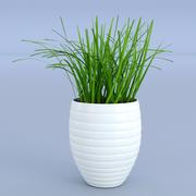 Çiçek çim çömlek 3d model