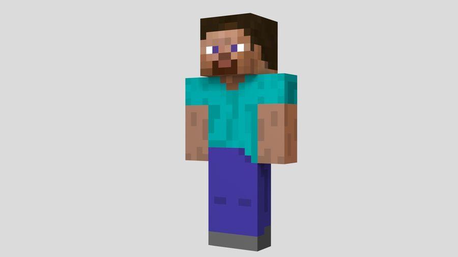 Steve Carácter de Minecraft royalty-free modelo 3d - Preview no. 2