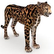 Roi guépard 3d model