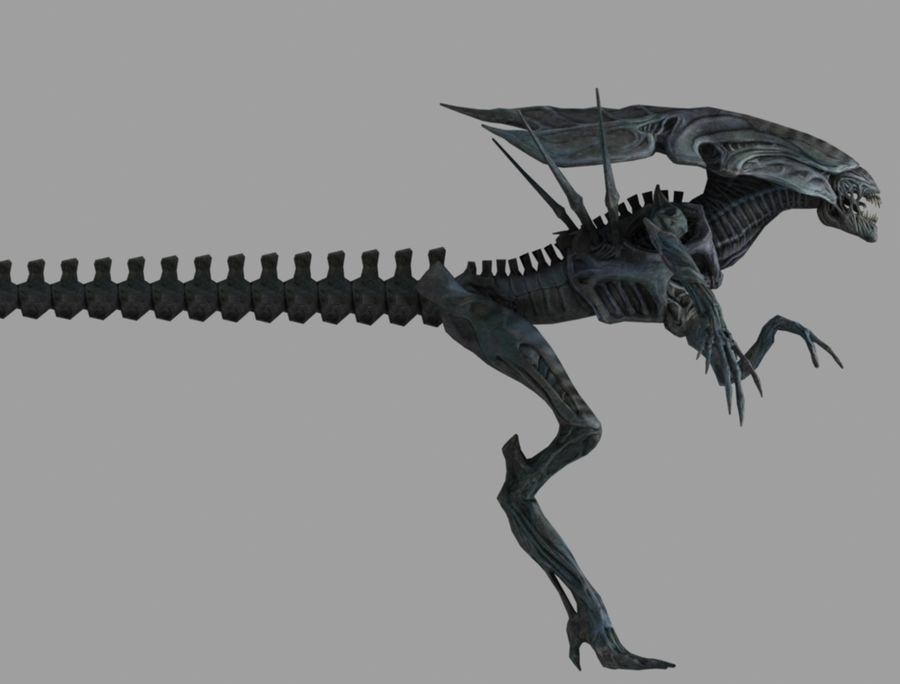 alien qween royalty-free 3d model - Preview no. 4