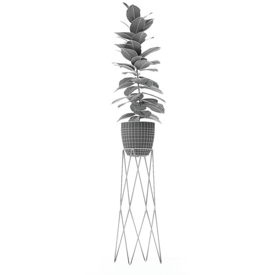 盆栽花盆中的植物异国植物 royalty-free 3d model - Preview no. 16