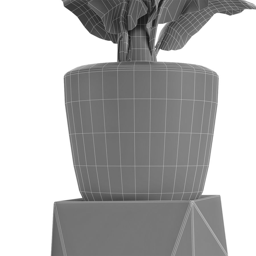Plant in Pot Flowerpot Exotic Plant royalty-free 3d model - Preview no. 8