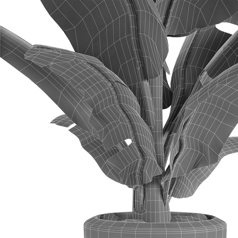 Plant in Pot Flowerpot Exotic Plant royalty-free 3d model - Preview no. 7