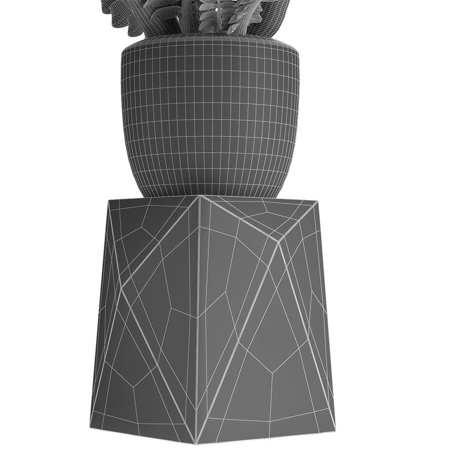 盆栽花盆中的植物异国植物 royalty-free 3d model - Preview no. 8