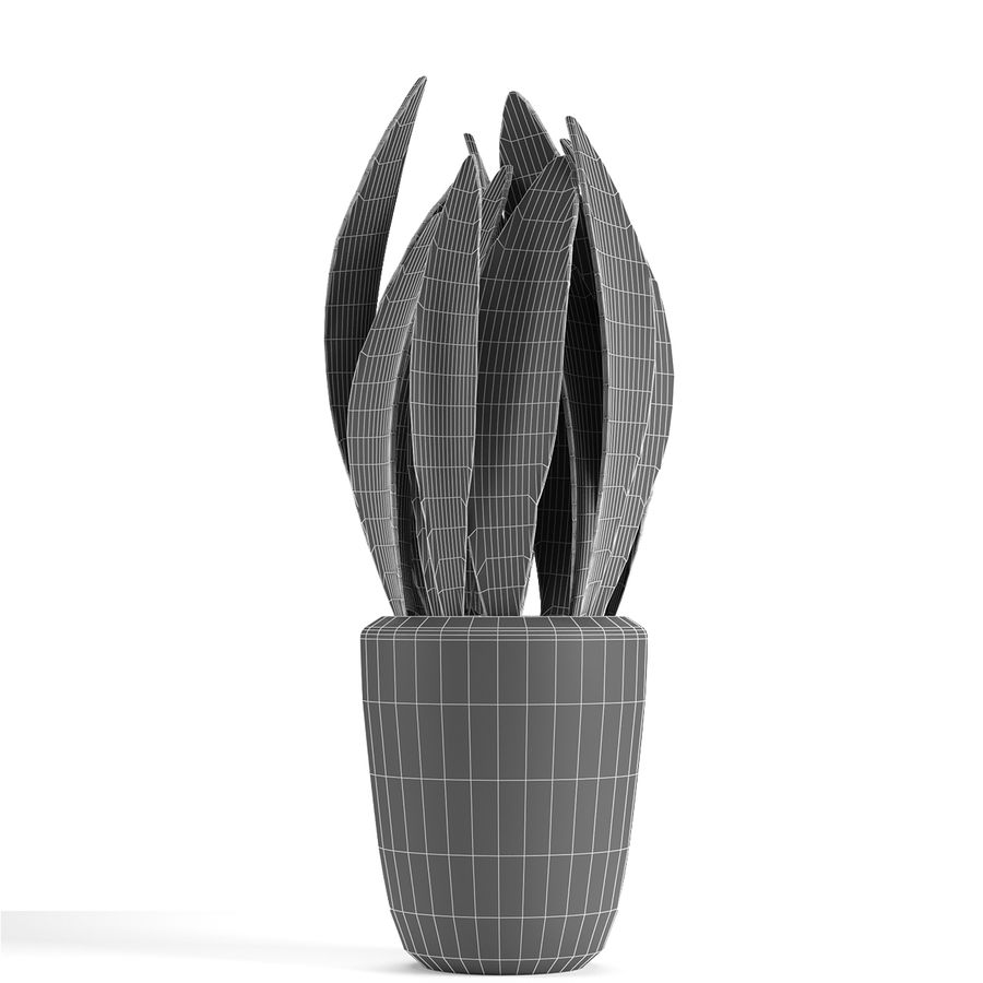 Plant in de exotische plant van de pottenbloempot royalty-free 3d model - Preview no. 6