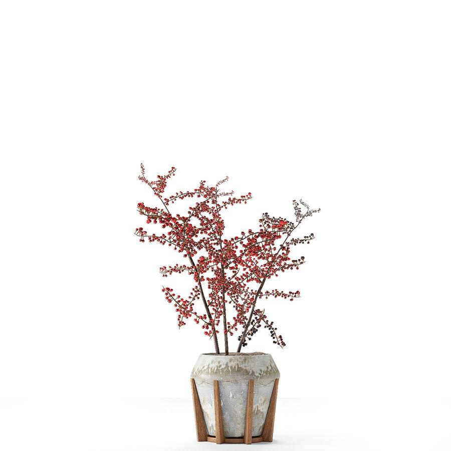 Plant in de exotische plant van de pottenbloempot royalty-free 3d model - Preview no. 7