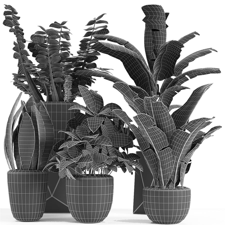 Collecties Planten 3 royalty-free 3d model - Preview no. 2