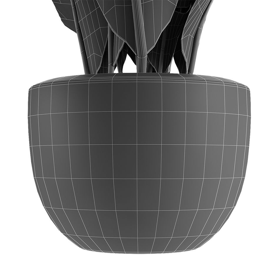 Collecties Planten 3 royalty-free 3d model - Preview no. 8