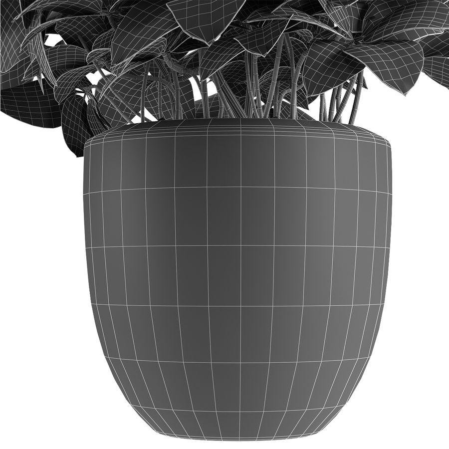 Collecties Planten 3 royalty-free 3d model - Preview no. 23