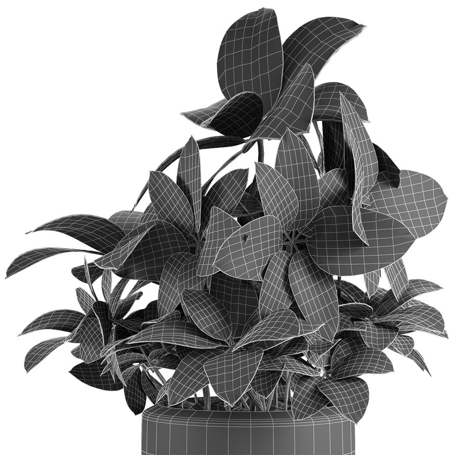Collecties Planten 3 royalty-free 3d model - Preview no. 22
