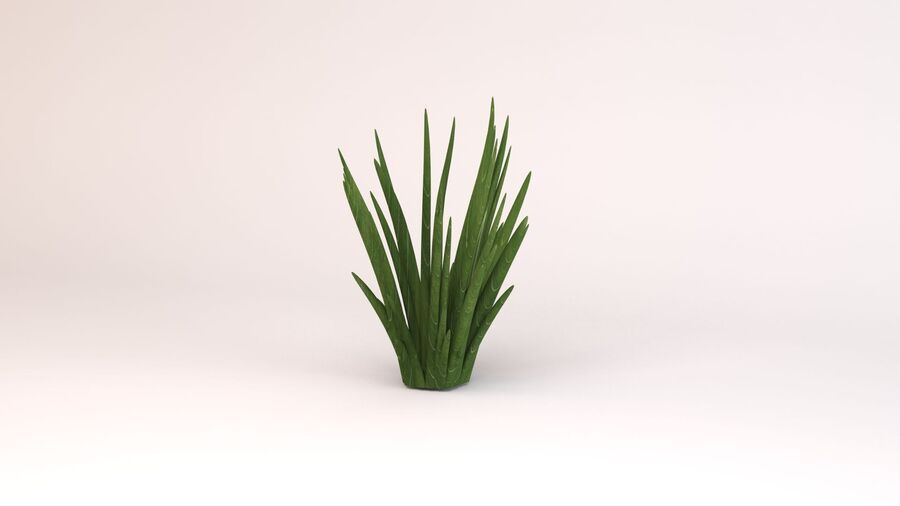 Flax Green royalty-free 3d model - Preview no. 2