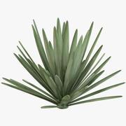 Flax Green 3d model