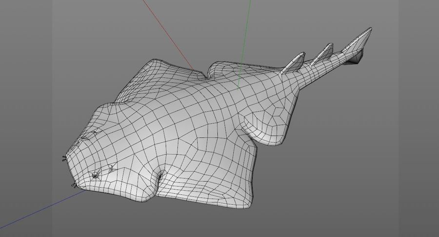 Ryba Angelshark royalty-free 3d model - Preview no. 13