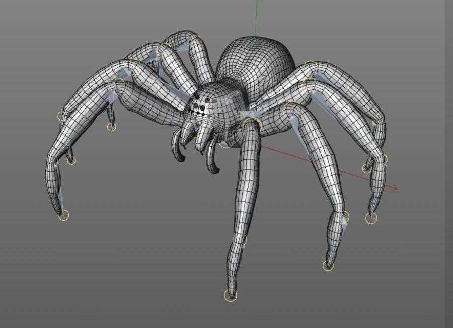 Tarantula Spider Rigged royalty-free 3d model - Preview no. 10