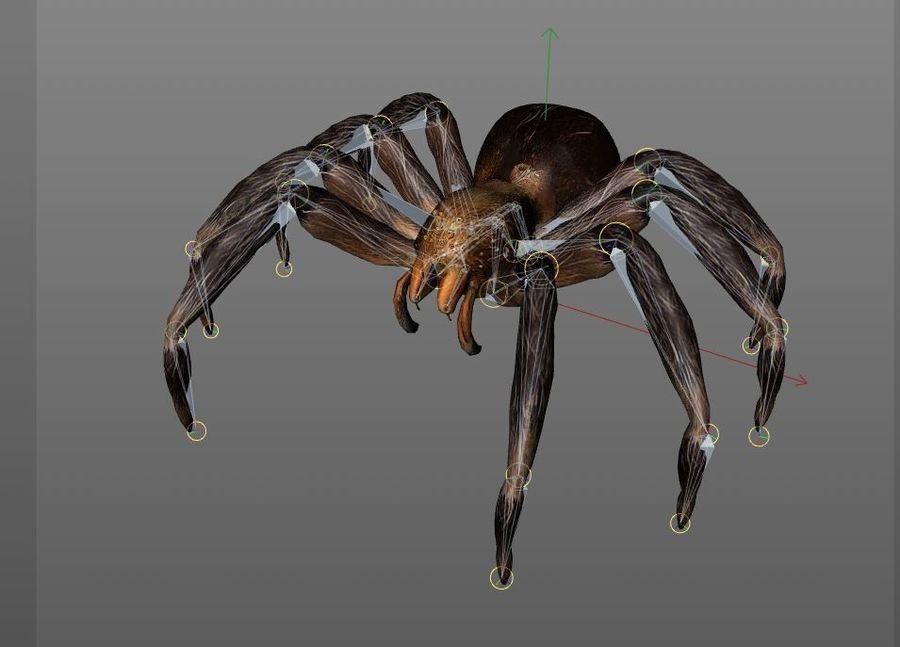 Tarantula Spider Rigged royalty-free 3d model - Preview no. 8