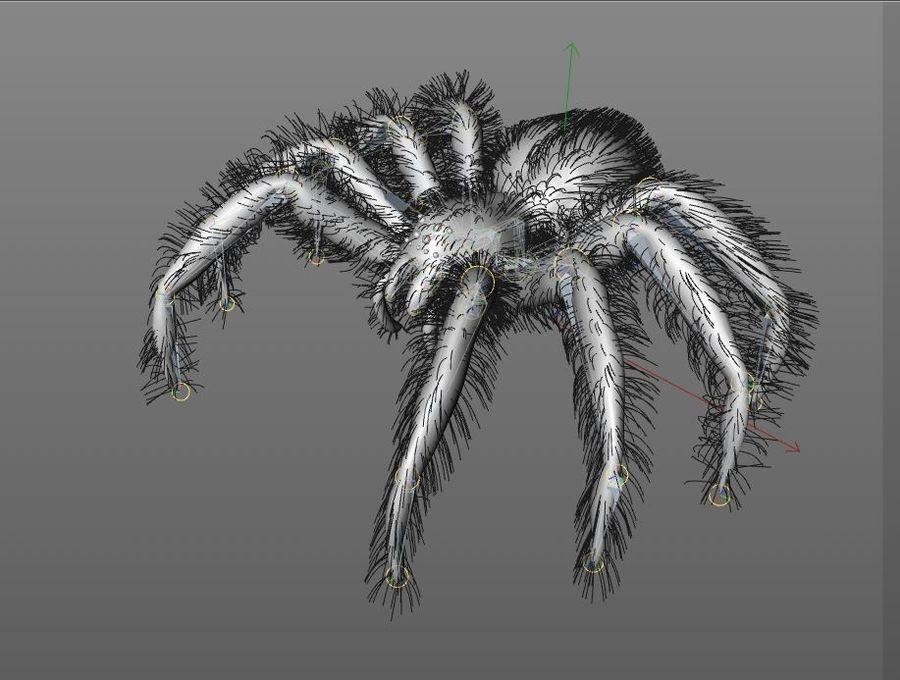 Tarantula Spider Rigged royalty-free 3d model - Preview no. 12