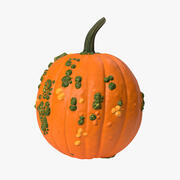 Pumpkin with Warts 3d model