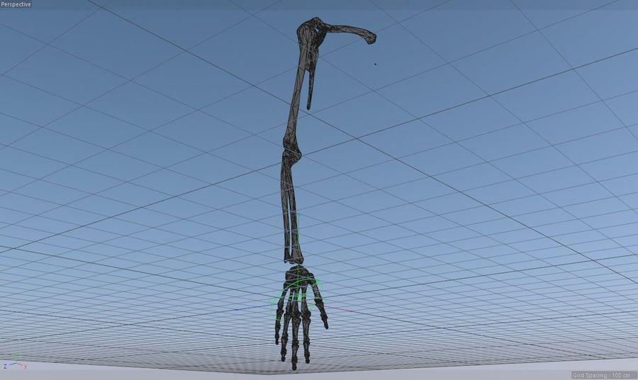 Ludzka kończyna kończyny górnej i anatomia kości ręki royalty-free 3d model - Preview no. 16