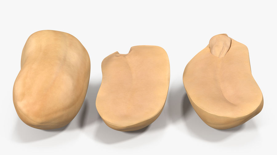 Peanut Seeds Peeled royalty-free 3d model - Preview no. 15