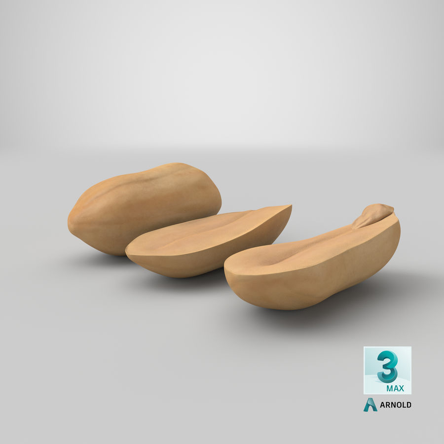 Peanut Seeds Peeled royalty-free 3d model - Preview no. 42