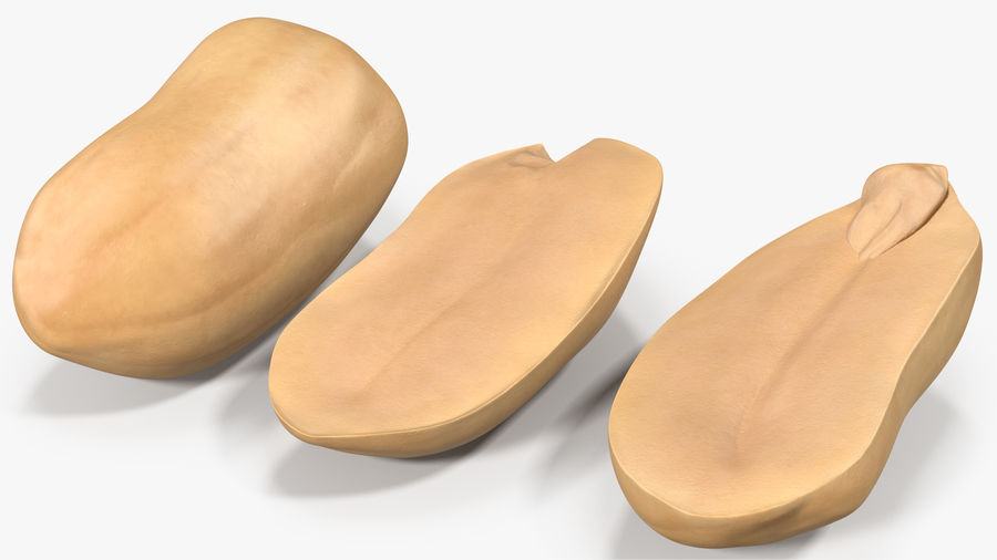 Peanut Seeds Peeled royalty-free 3d model - Preview no. 3