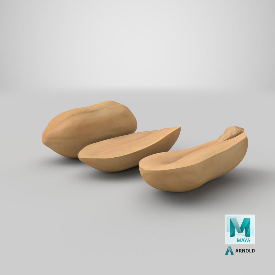 Peanut Seeds Peeled royalty-free 3d model - Preview no. 45