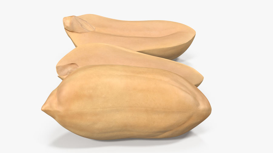 Peanut Seeds Peeled royalty-free 3d model - Preview no. 16