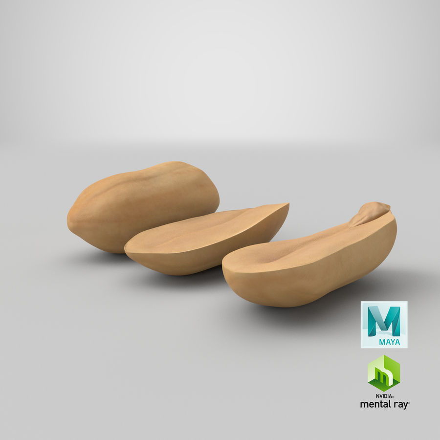 Peanut Seeds Peeled royalty-free 3d model - Preview no. 46