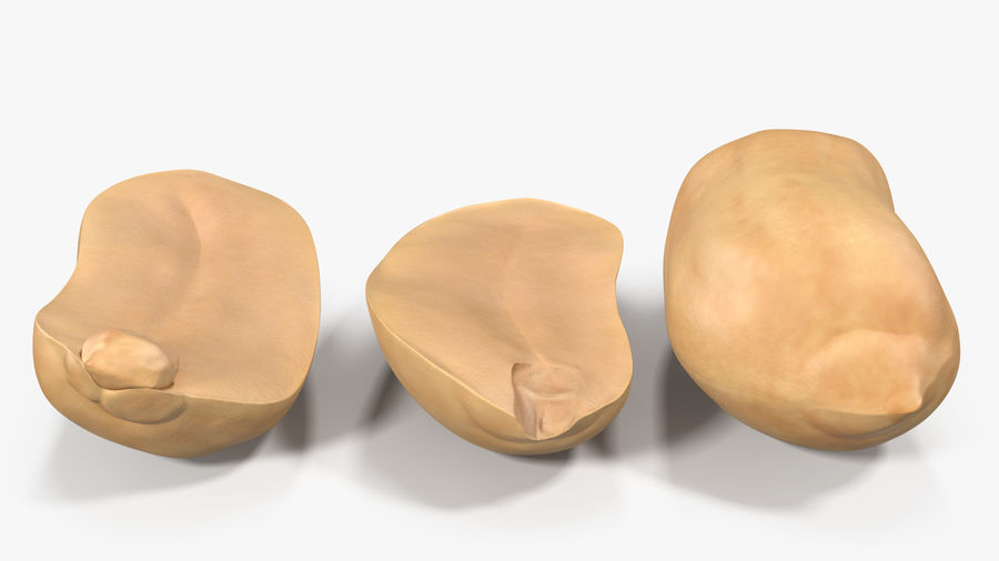 Peanut Seeds Peeled royalty-free 3d model - Preview no. 17