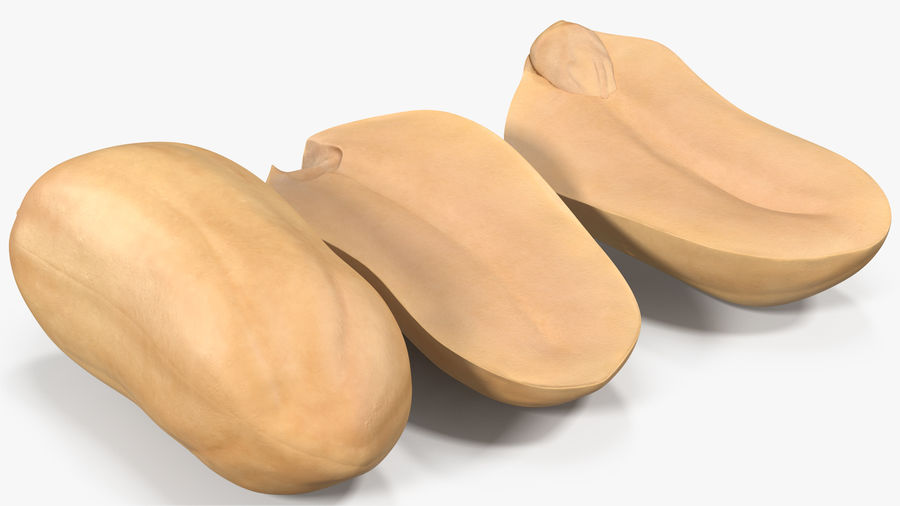 Peanut Seeds Peeled royalty-free 3d model - Preview no. 4