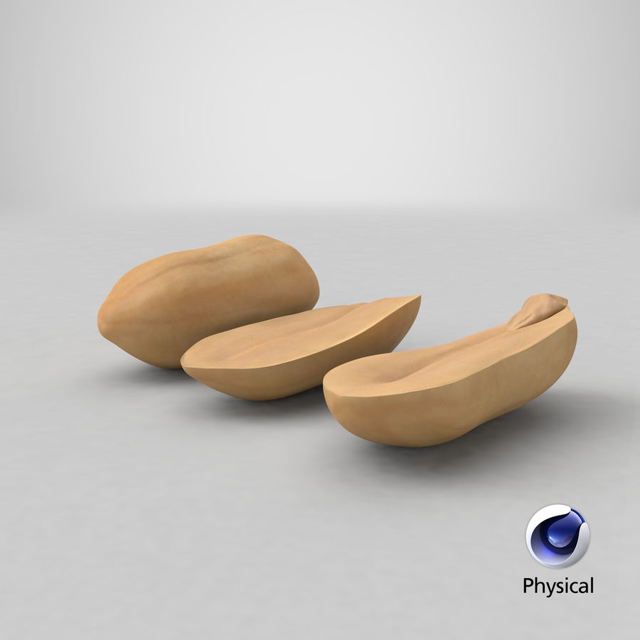 Peanut Seeds Peeled royalty-free 3d model - Preview no. 40