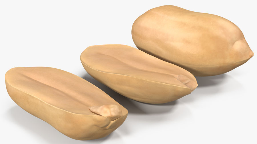 Peanut Seeds Peeled royalty-free 3d model - Preview no. 6