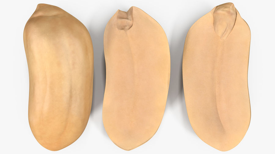 Peanut Seeds Peeled royalty-free 3d model - Preview no. 14
