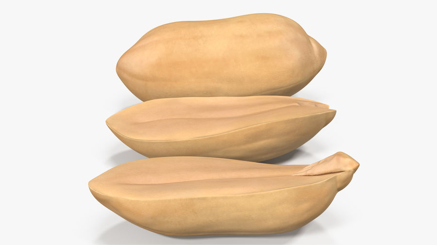 Peanut Seeds Peeled royalty-free 3d model - Preview no. 18